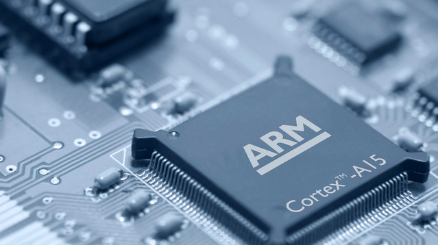 ARM Holdings, Microchip manufacturer